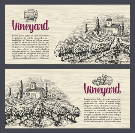 Rural landscape with villa, vineyard fields and hills. Vector engraving drawn vintage illustration. Old paper beige texture background. For label, poster, vertical banner Çizim