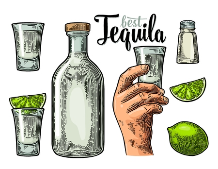 Set for tequila. Hand holding and clinking glass, bottle, salt, lime whole and slice.