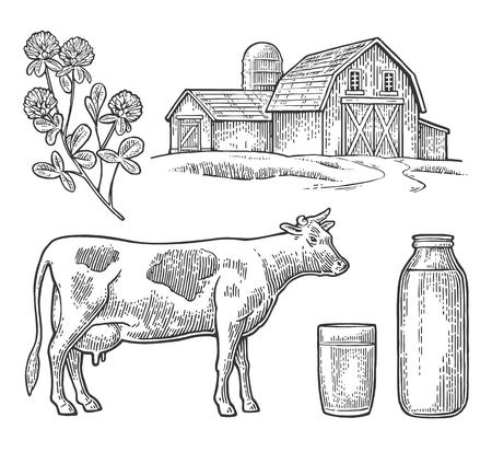 pasteurized: Set Milk farm. Cow head, clover, glass and bottle. Illustration