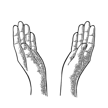 supplicate: Two Praying Hands. Open empty palms up. Vector black vintage engraving illustration isolated on a white background. For web and poster Illustration