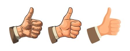 Mano que muestra el símbolo Me gusta. Haciendo pulgar arriba gesto. Elemento de diseño dibujado a mano. Vector color vintage grabado y plana ilustración aislada sobre fondo blanco. Firme para el cartel, web, gráfico de información