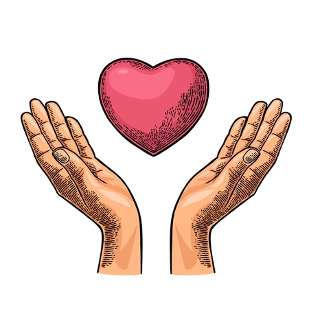 Heart in open female human palms. Vector black vintage engraving illustration isolated on a white background. For poster Mother s Day