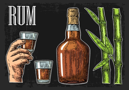 Glass and bottle of rum with sugar cane. Vintage color vector engraving illustration for label, poster, web, invitation to party. Isolated on black background