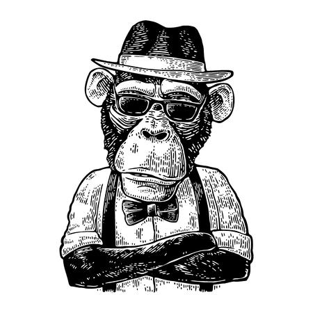 Hipster mono con los brazos cruzados en el sombrero, camisa, gafas y pajarita