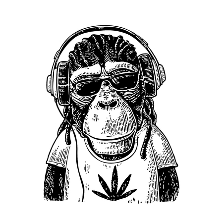 Monkey hipster with dreadlocks in headphones, sunglasses and t-shirt Çizim
