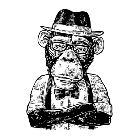 Monkey hipster with arms crossed in hat, shirt, glasses and bow tie