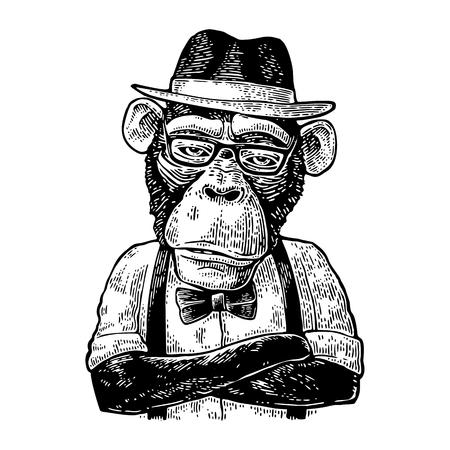 Un hipster de singe avec les bras croisés dans un chapeau, une chemise, des lunettes et un n?ud papillon Vecteurs