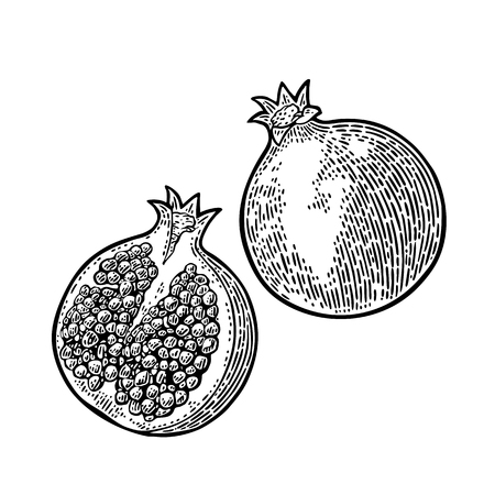 Whole and half passion fruit with seed. Vector engraving