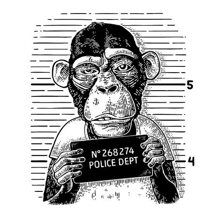 警察部バナーを保持している t シャツを着たサル