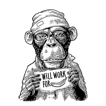 Monkeys holding a table with lettering WILL WORK FOR FOOD.
