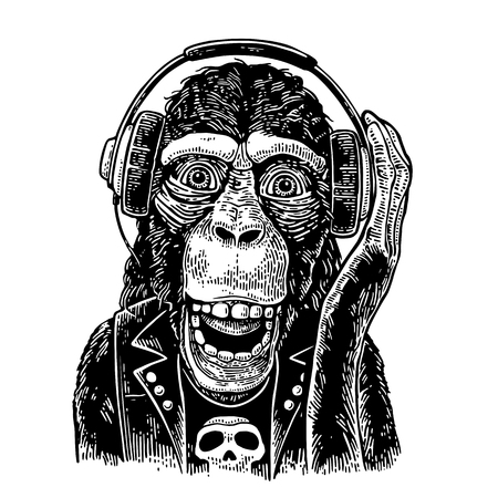 Monkey rocker in headphones and t-shirt with skull. Vintage engraving