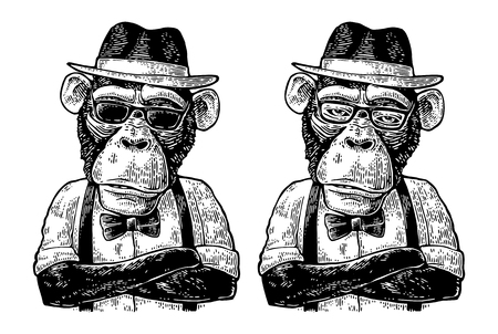 Monkey hipster with arms crossedin in hat, shirt, glasses and bow tie