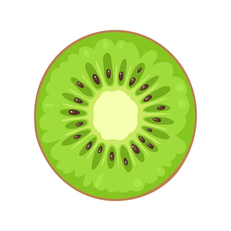 Round slice of kiwi. Isolated on white background. Vector flat color illustration 向量圖像