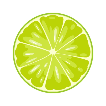 Round slice of lime. Isolated on white background. Vector flat color illustration