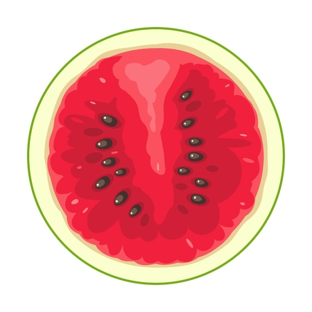 Round slice of watermelon. Isolated on white background. Vector flat color illustration