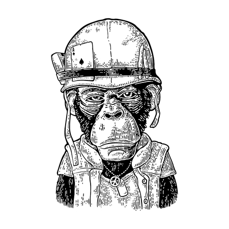 Monkey in soldier helmet with glasses. Vintage black engraving illustration for poster and t-shirt design. Isolated on white background.