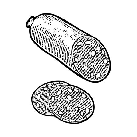 Whole and slices smoked sausage salami. Vintage vector engraving illustration