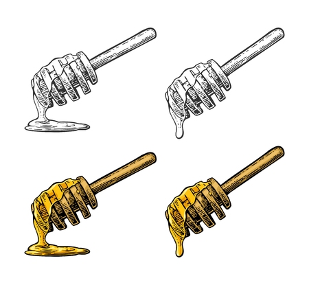Honey dripping from wooden stick. Illustration