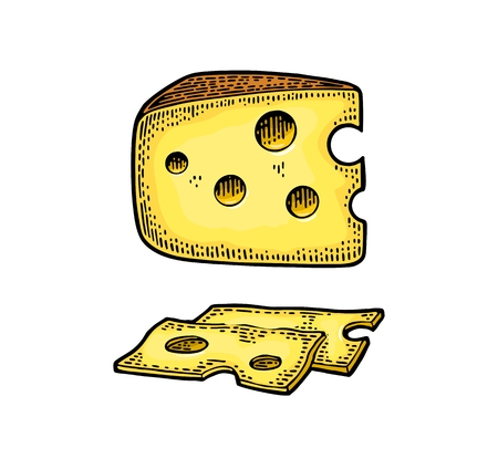 Pieces of Cheese. Color vintage engraved vector