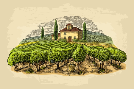 Rural landscape with villa, vineyard fields and hills. Vector engraving