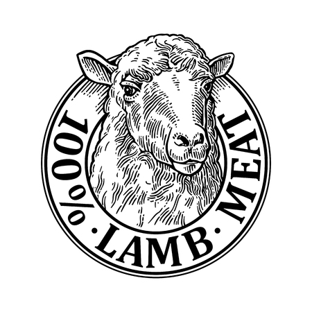 Sheep head. 100 percent lamb meat lettering. Hand drawn in a graphic style. Vintage black vector engraving illustration for label, poster, logotype. Isolated on white background Ilustração