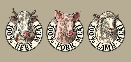 Cows, pig, sheep head. 100 percent beef pork lamb meat lettering. Hand drawn in a graphic style. Vintage color vector engraving illustration for label, poster, logotype. Isolated on gray background
