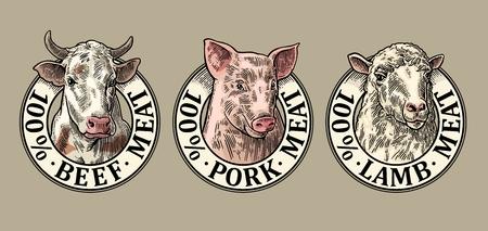 Koeien, varken, schapenkop. 100 procent rundvlees varkensvlees lamsvlees letters. Hand getekend in een grafische stijl. Vintage kleur vector gravure illustratie voor label, poster, logotype. Geïsoleerd op grijze achtergrond