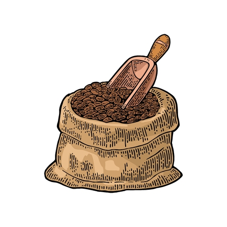 Sack with coffee beans with wooden scoop. Hand drawn sketch style. Vintage color vector engraving illustration for label, web, flayer. Isolated on white background.