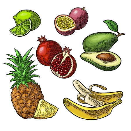 Set tropical fruits. Pineapple, lime, banana, pomegranate, maracuya, avocado.