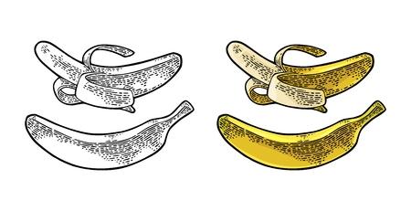 全体と半分皮をむいたバナナ。ベクター ブラック ビンテージ彫刻