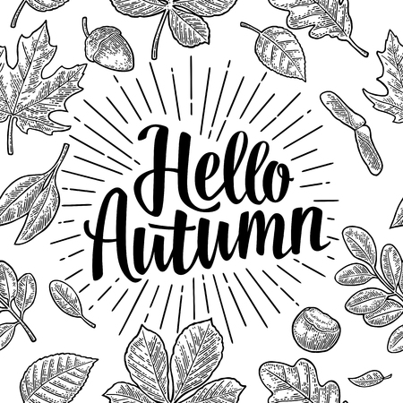 Seamless pattern leafs, acorn, chestnut and seed. Hello Autumn lettering. Illustration