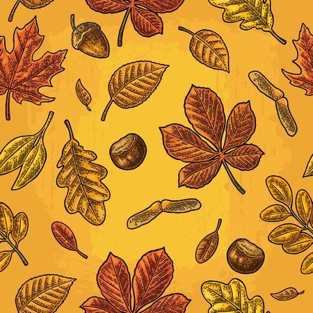 Naadloos patroon bladert, eikel, kastanje en zaad. Vector vintage gravure