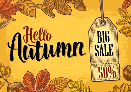Poster AUTUMN lettering with set leaf and acorn. Vector engraving Ilustrace
