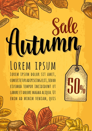 Poster AUTUMN lettering with set leaf and acorn. Vector engraving Illustration