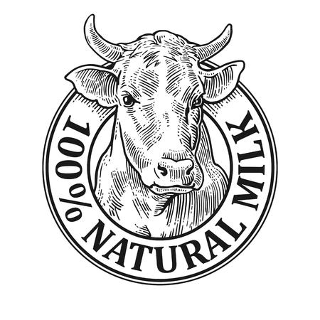 牛の頭。100 天然ミルク。グラフィック スタイルで描画の手。ビンテージ ベクトル ラベル、ポスター、ロゴのイラストを彫刻します。白い背景に分