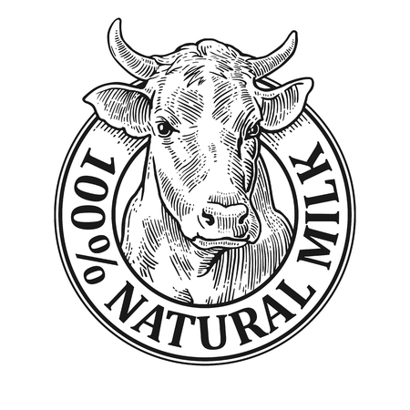 Cows head. 100 Natural Milk. Hand drawn in a graphic style. Vintage vector engraving illustration for label, poster, logotype. Isolated on white background