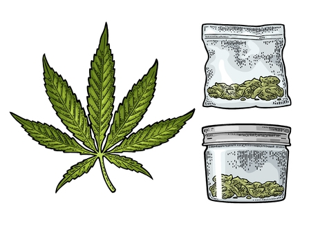 Marijuana leaf, glass jar with lid and plastic bag for cannabis. Hand drawn design element. Vintage black vector engraving illustration for label, poster, web. Isolated on white background Illustration