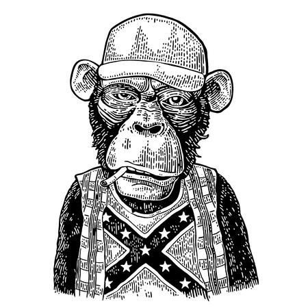 Redneck de singe dans le chapeau de camionneur, t-shirt avec le drapeau confédéré. Banque d'images - 88426027