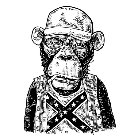 Monkey redneck in trucker cap, t-shirt with flag Confederate. Illustration
