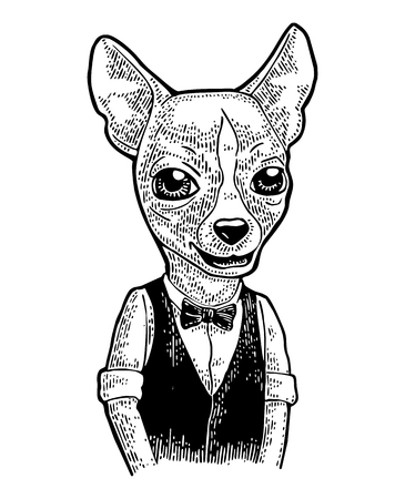 蝶ネクタイ、ベスト、シャツに犬流行に敏感。ヴィンテージ黒ポスター用イラストを彫刻します。白い背景に分離