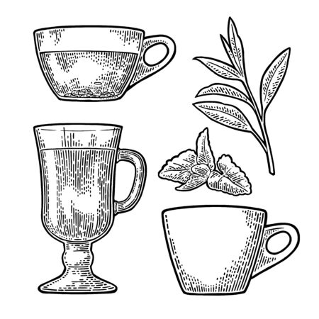 Cup with tea and branch with leaves.