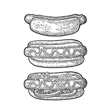 Hotdog with tomato, mustard, leave lettuce. Vector engraving Illustration