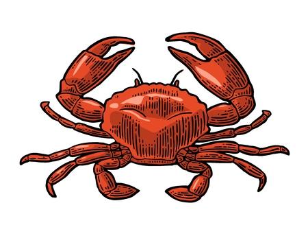 Crab icon illustration.