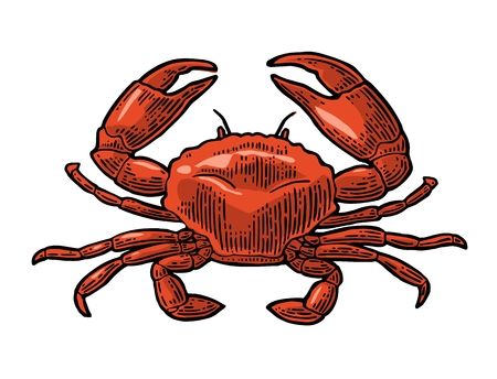 Crab icon illustration.
