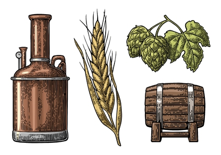 Row of tanks, hop branch with leaf, ear of barley and wooden barrel. For poster production process brewery beer. Isolated on white background. Vintage color vector engraving illustration Çizim