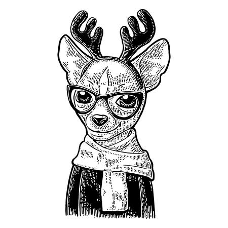 メガネ、スカーフ、角、コートを持つ犬鹿。ヴィンテージ黒ポスター用イラストを彫刻します。白い背景上に分離。