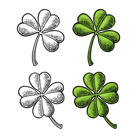 Good luck four and three leaf clover. Vintage color and black vector engraving illustration for info graphic, poster, web. Isolated on white background. Vettoriali