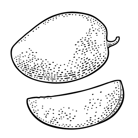 Whole and slice of a tropical fruit. Vector, black vintage engraving illustration for menu, poster. Isolated on white background