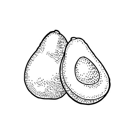 Avocado icon.