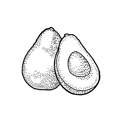 Avocado icon.